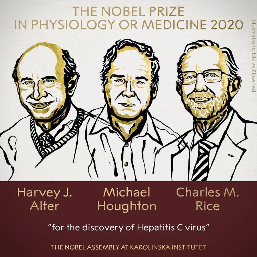诺贝尔医学奖揭晓,是他们仨图片