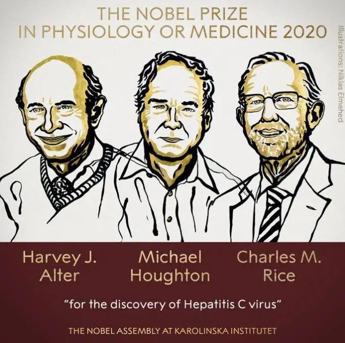 2020诺贝尔生理学或医学奖揭晓,他们发现了丙肝病毒!图片
