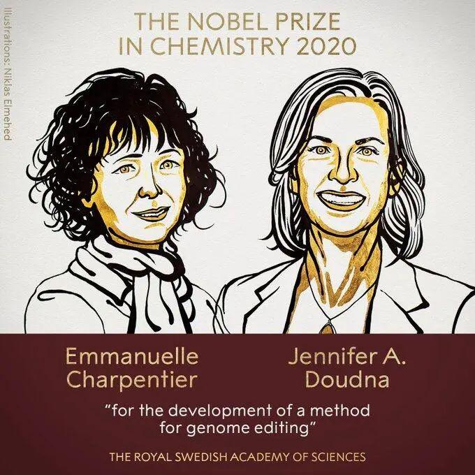 诺贝尔化学奖,花落她和她!图片