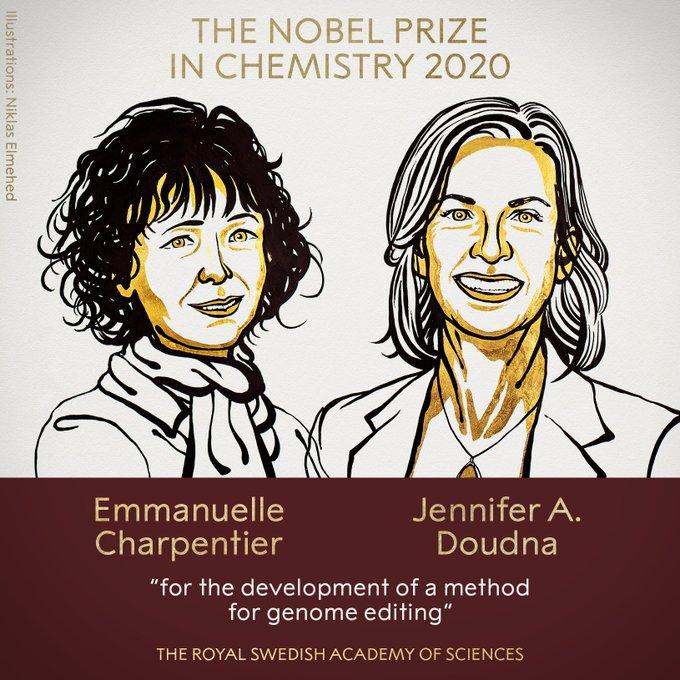 2名女性分享2020年诺贝尔化学奖 近10年这些人曾获奖