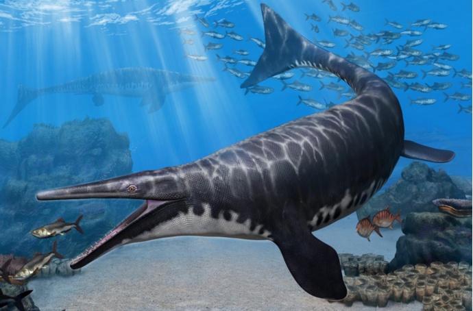 古生物学家发现沧龙新物种有着类似鳄鱼的鼻腔