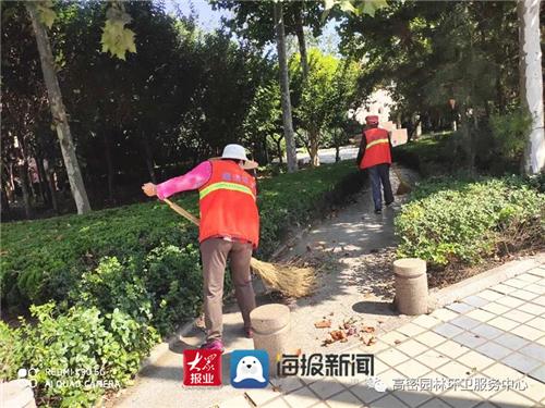 山东高密:园林环卫服务中心与秋天共舞 进行固体清扫和落叶清理