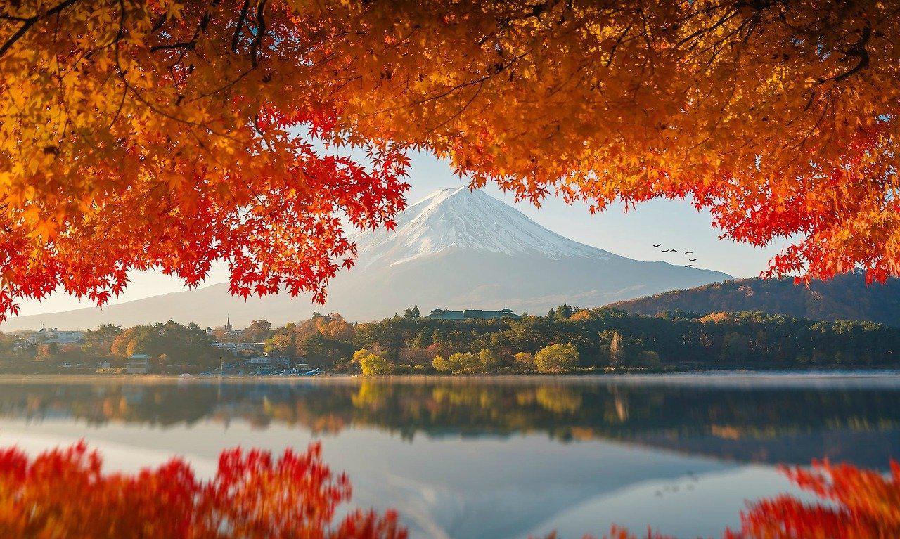 富士山 | 秋