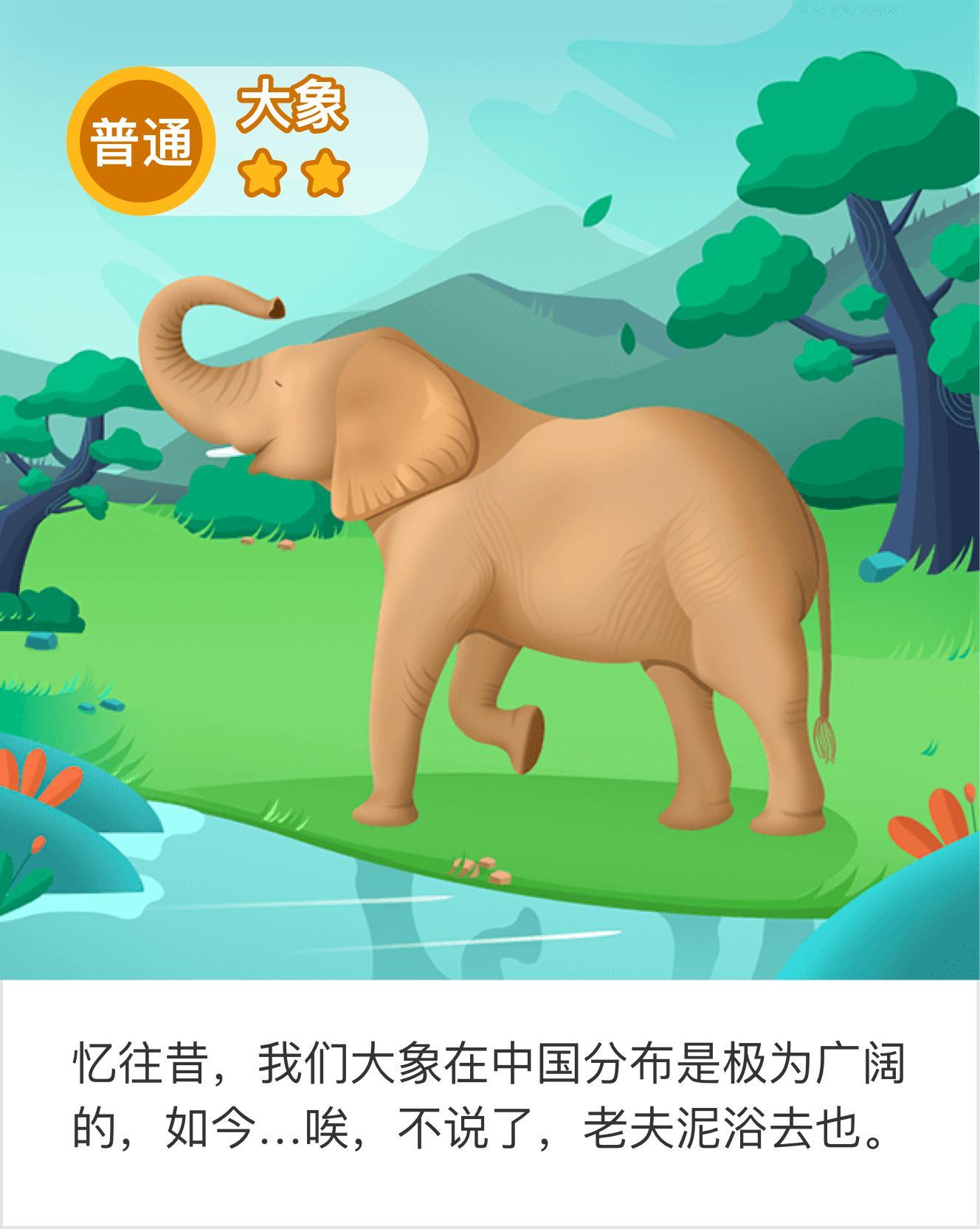 我在帮助了大象,获得了爱心和动物卡片