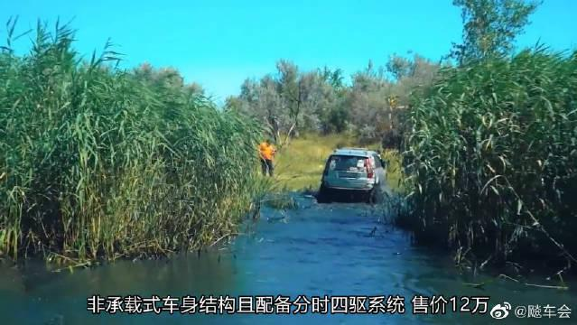 视频:哈弗H3和比越野,遇到一片沼泽后,才知道什么叫中国制造?