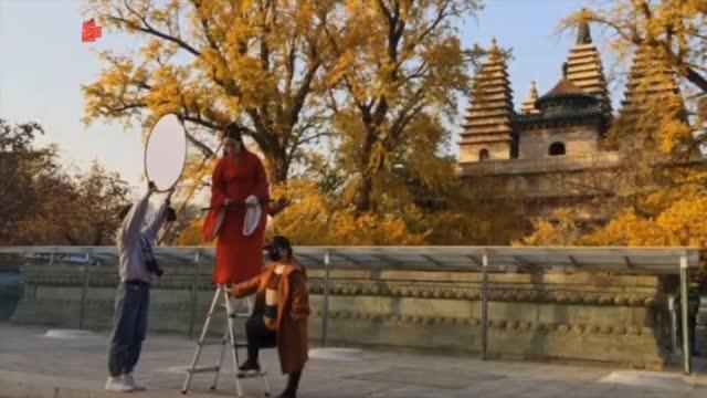 寻找最美秋景|白石桥东真觉寺,秋意盎然真迷人