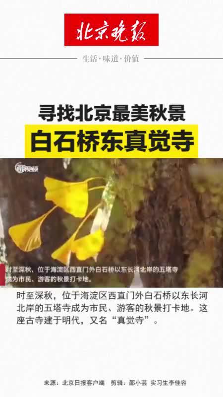 寻找北京最美秋景|白石桥东真觉寺……