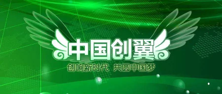"""直击第四届""""中国创翼""""创业创新大赛全国选拔赛比赛现场"""