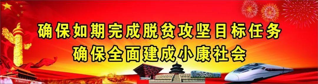 陕西日报社组织老干部到耀州区小丘镇移村参观考察脱贫攻坚成果