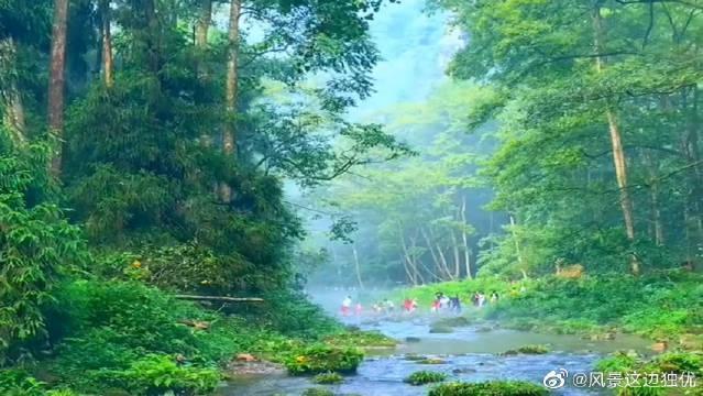 张家界国家森林公园金鞭溪,景色优美,人间仙境