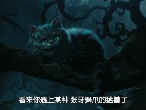 爱丽丝梦游仙境:巨型猫看到受伤的爱丽丝,要帮她处理伤口