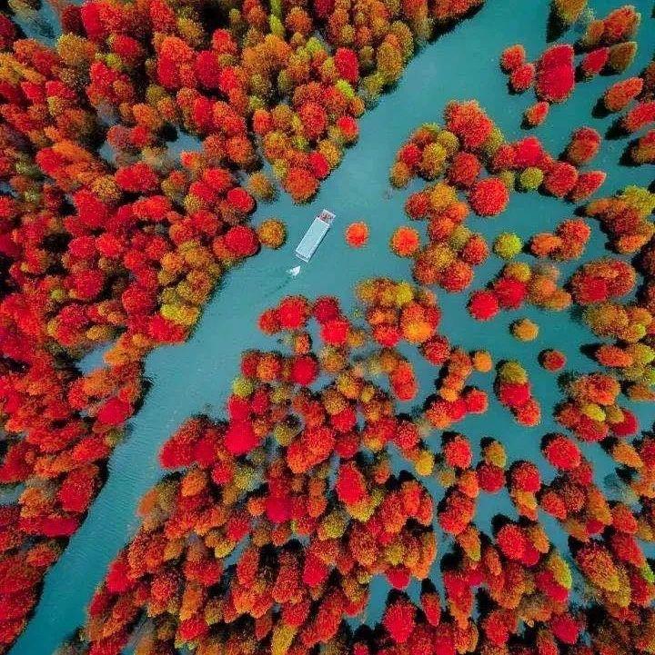 【周末2日休闲自驾】皖南川藏线、查济古村落(11.28-29)| 赏红叶、宿古村,绝美秋色入梦而来
