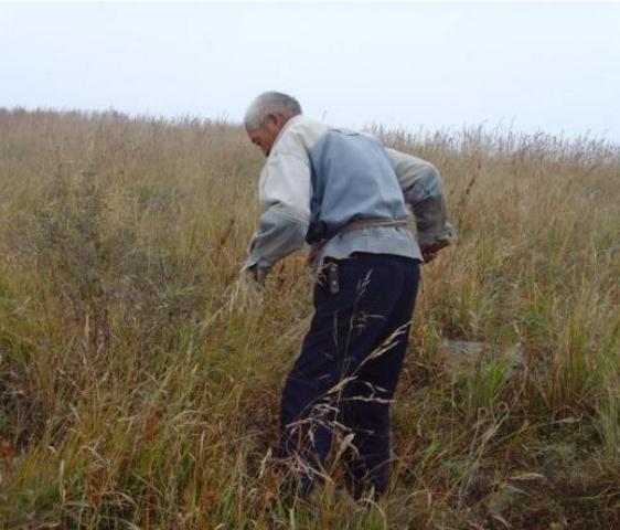 农村大爷上山割草,捡到宝贝石头,瞬间乐坏了