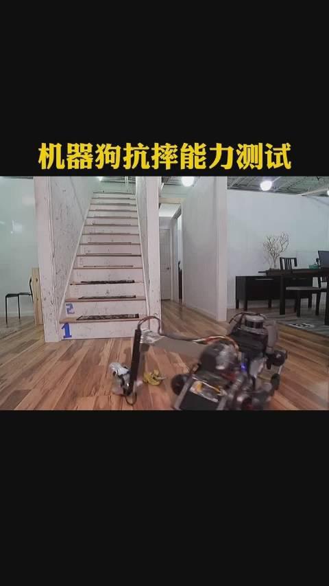 机器狗抗摔能力测试,果然还是被一堆香蕉皮给滑倒了……