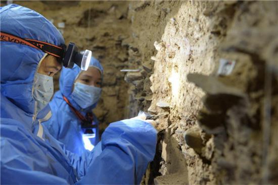 揭秘丹尼索瓦人DNA 将青藏高原人类活动历史推早至距今19万年