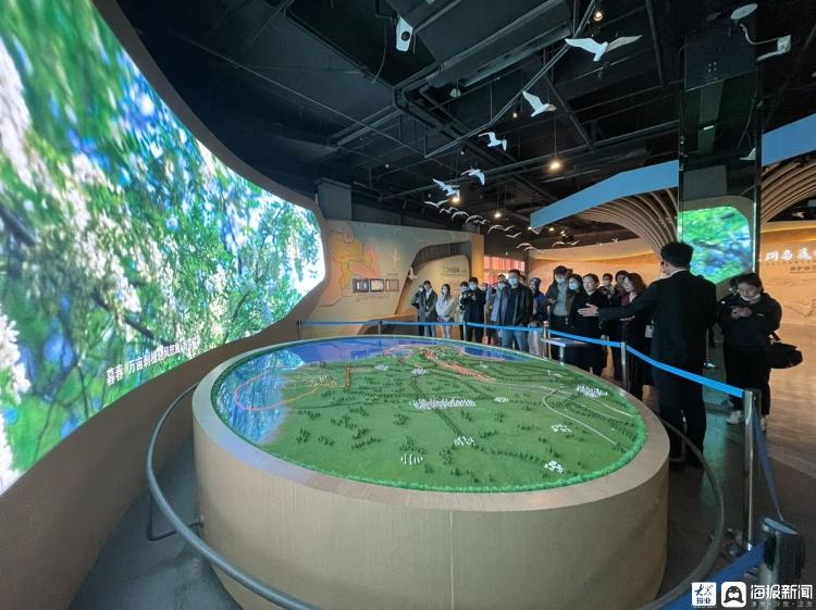抖i东营 | 鸟国探秘!走进黄河三角洲鸟类博物馆