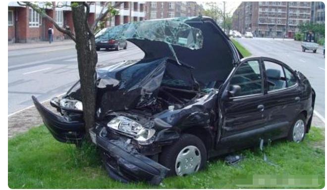 刹车失灵后,撞树和撞墙哪个更安全?