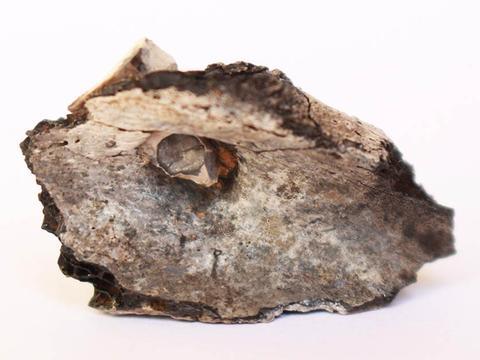 考古学家发现近东最古老的火葬:始于公元前7000年