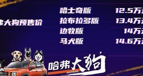 哈维尔大狗AT+差速锁,预售价125000不是很香吗?