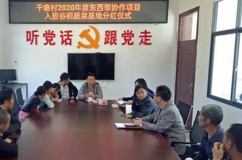 贵州麻江干塘村:扶贫产业见成效 村民分红乐开怀