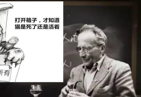 """薛定谔那只怪""""猫"""",与量子力学有啥关系,为何还扯出平行宇宙?"""