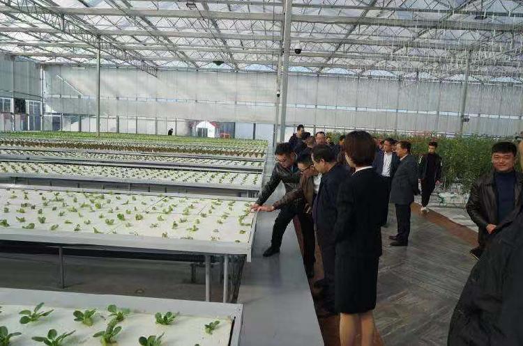 推动33个区县开展农村危房改造 重庆市住房城乡建委东西部扶贫协作这样干