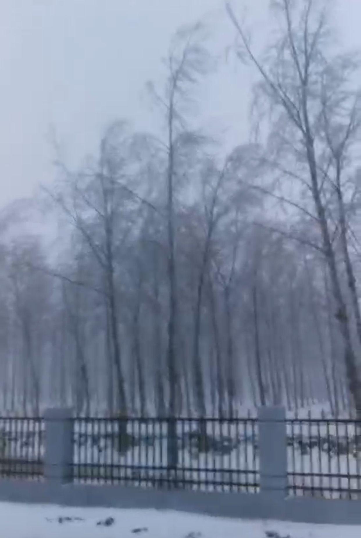 长春农安县迎入冬第一场雪 养殖户:需关注降温引起流行病的可能