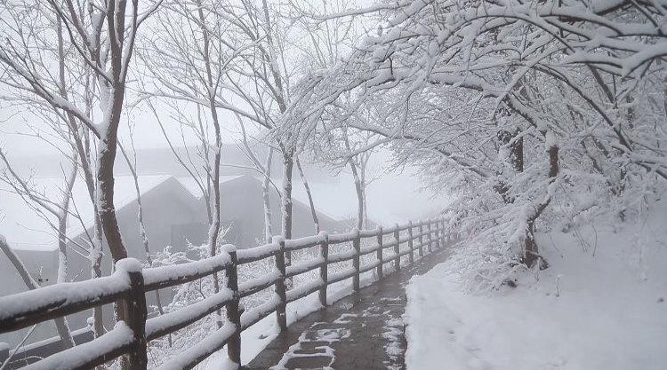 河南云台山迎入冬第一场雪 景区宛若天降水墨画 游客:美如仙境