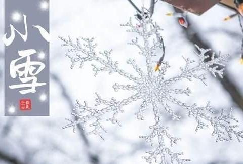 明日小雪,适合吃这3种传统食物,顺应时令,滋补身体好过冬