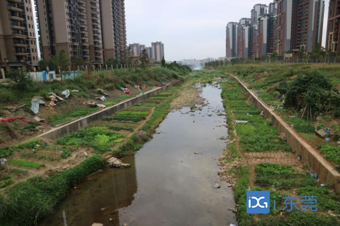东莞今年底基本建成污水收集系统,今后逐年推进源头雨污分流