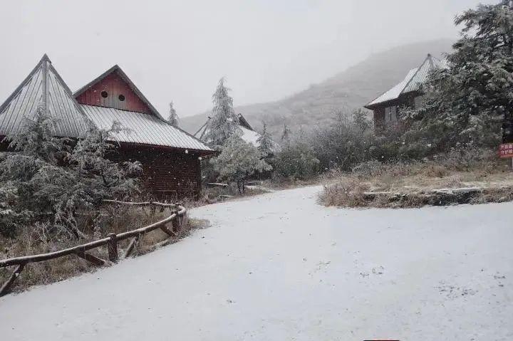 早生活丨重庆这个地方,下雪了!图片