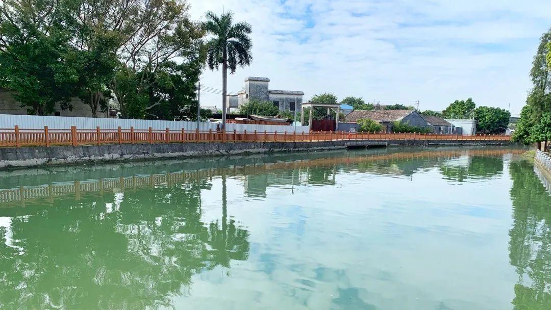 治水攻坚战 | 万江高基涌:综合整治水污染,城市污涌变清流