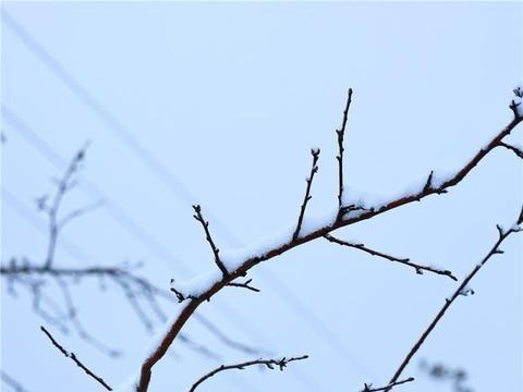 河南灵宝:雪落寺河好景色