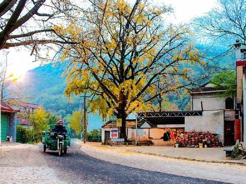 长兴有一个美丽的小山村,它的名字叫石岕口,仿佛静谧的山水画般