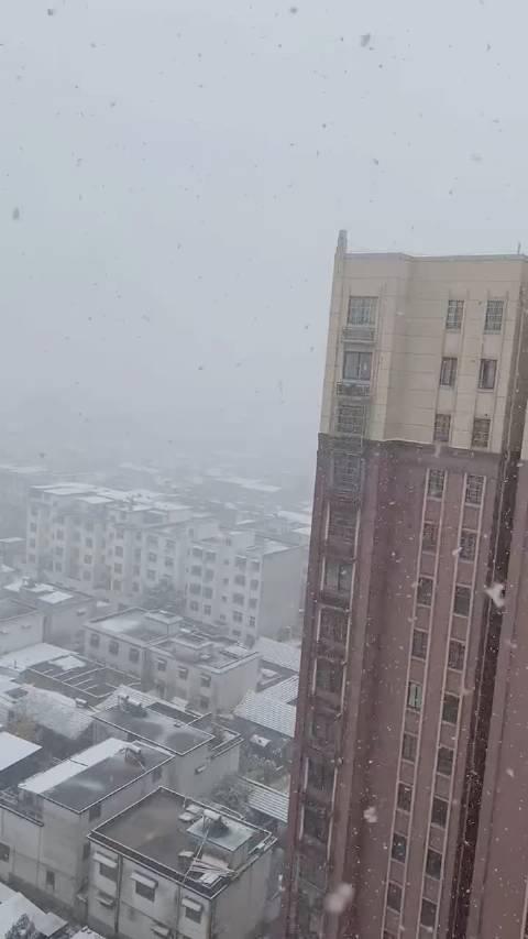 界首的雪下的那么认真,你那里下雪了吗?报坐标
