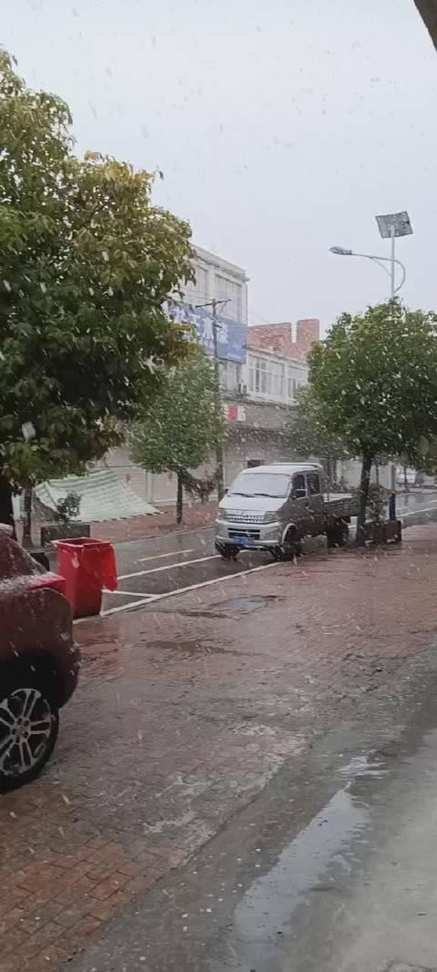 11月23日,阜阳雨夹雪。雪等来了,你等的那个人来了吗?