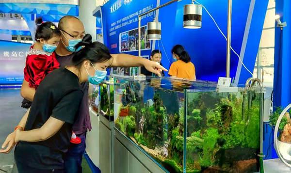 设置六个展区 厦门休闲渔业展打造观赏水族专区