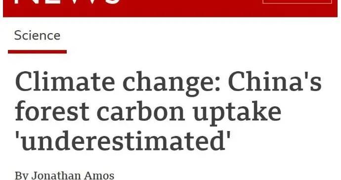 """""""中国的贡献被低估了!""""英媒:中国植树造林的碳吸收规模令人惊讶"""