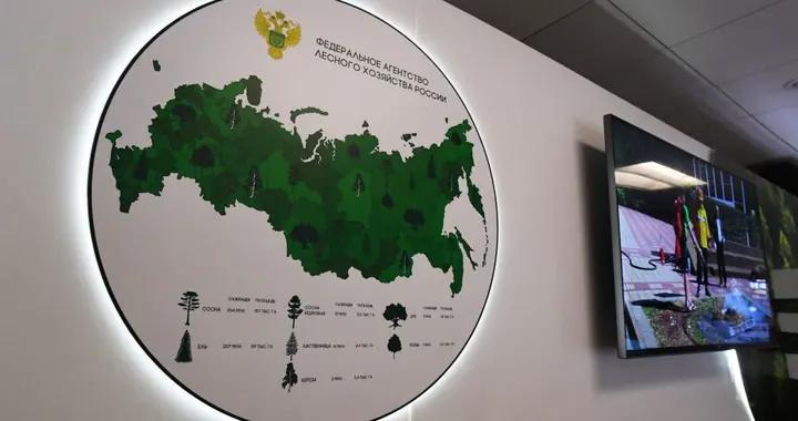 俄罗斯拟补充森林资源战略储备