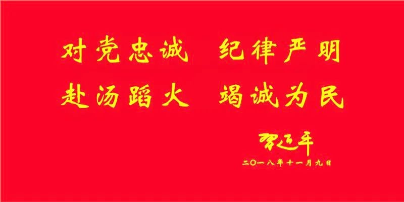 腾冲界头镇市场监管所开展2020年安全用药月宣传活动