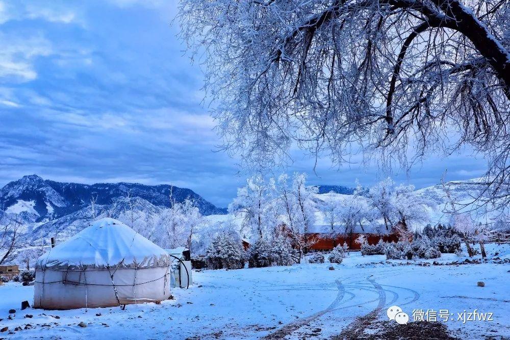 新疆察布查尔:骆驼驿站进入油画般的冰雪世界图片