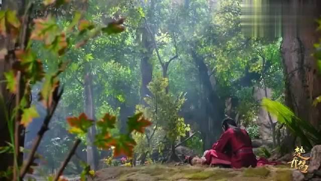 楚乔传:萧策太会扮猪吃老虎了,这柔弱扮得连楚乔都看不出来