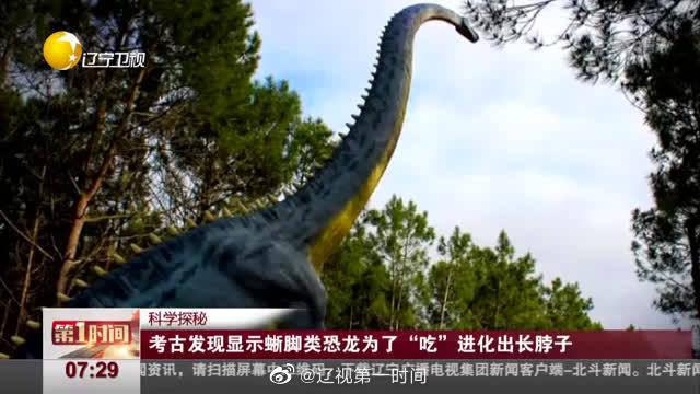 """考古发现显示蜥脚类恐龙为了""""吃""""进化出长脖子"""