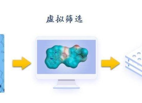 乙肝针对聚合酶新药指引,日本科学家获得,高纯度HBV- RT