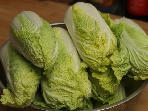 冬天白菜怎么保存?老菜农的方法简单又实用,吃到过年都不坏