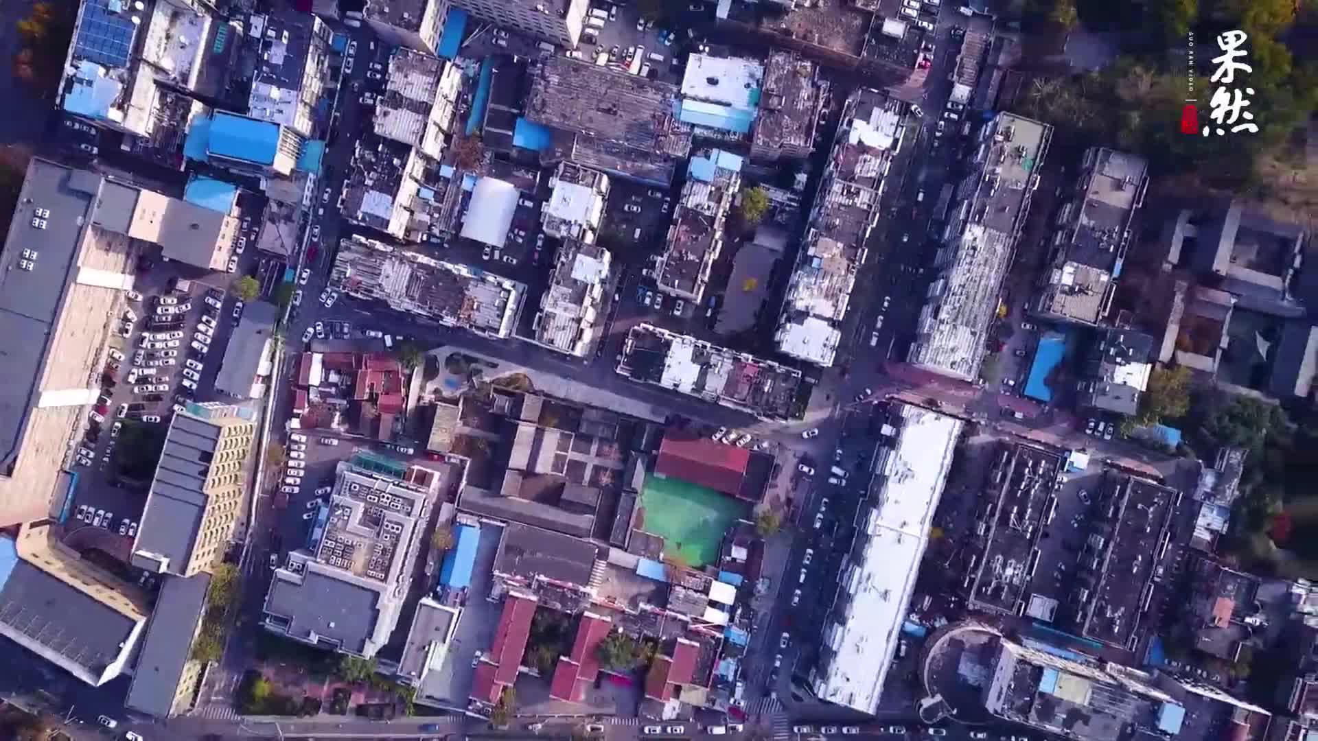 果然视频|航拍趵突泉、五龙潭周边居民区现状,未来将变身公园