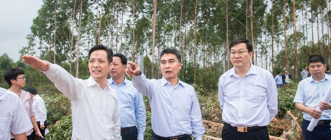 王乃学蔡锦军:让铁山东港产业园成为增强北海经济实力新的有力支撑