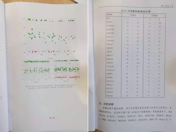 """DNA鉴定书中的剖析阐明,鉴定效果为""""清扫"""""""