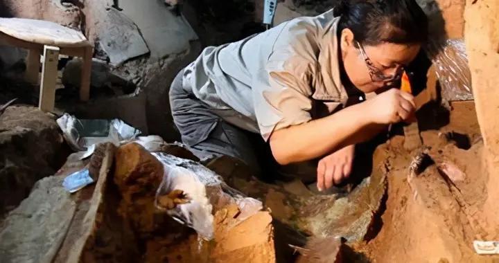 人平均身高一米七三,考古专家发现一化石,网友:古人真高