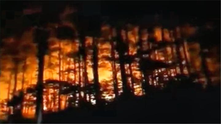 肇庆:山头突然起火,及时扑灭无人伤亡